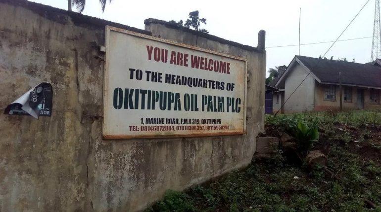 Okitipupa Oil Palm