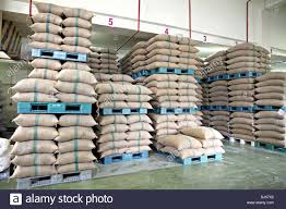 Rice Stacked