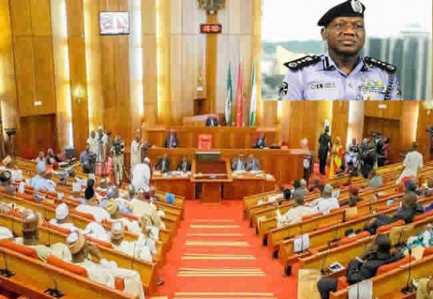 Senate-at-a-plenary-Inset-Police-IG-Idris1
